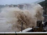 绿城外援:从未见过台风灾害 中国人很有防范经验