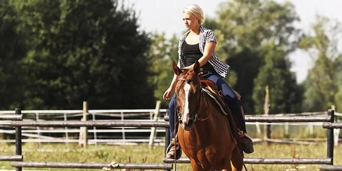 騎馬注意事項,這些你都知道嗎?