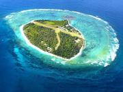 视频-畅游伊利特女士岛 海洋生物尽收眼底
