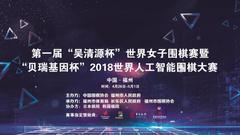 吴清源杯详细日程出炉 人机大战27日13:30开幕