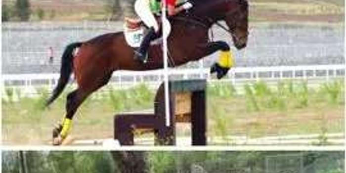 奇葩!竟然有人爱马,爱到把自己变成了马...