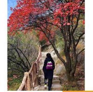 西安赏秋必去景点