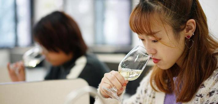 探访西北农林科技大学葡萄酒学院