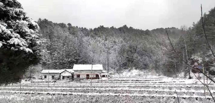 牛背梁国家森林公园迎来初雪