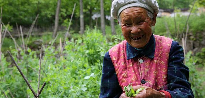 镇坪88岁奶奶深山过神仙日子