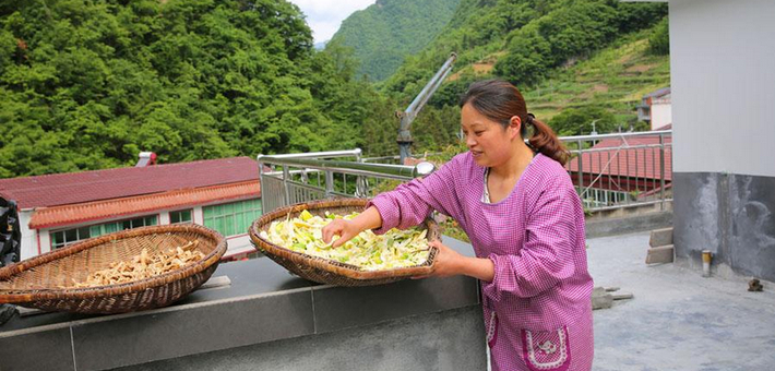 女子山林里养猪 花160万建山庄