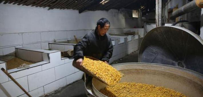 山村烤酒师傅:土法烤苞谷酒