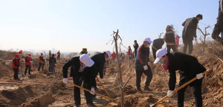 体育局开展植树护绿实践活动