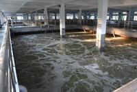 古城区完成洗车场整治 洗涤水全部接入城市污水管网