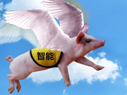 """IFA辣评:站在风口的""""智能猪""""真能飞起来么?"""