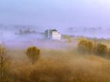 江苏泗洪湿地晨雾笼罩 好似水墨画