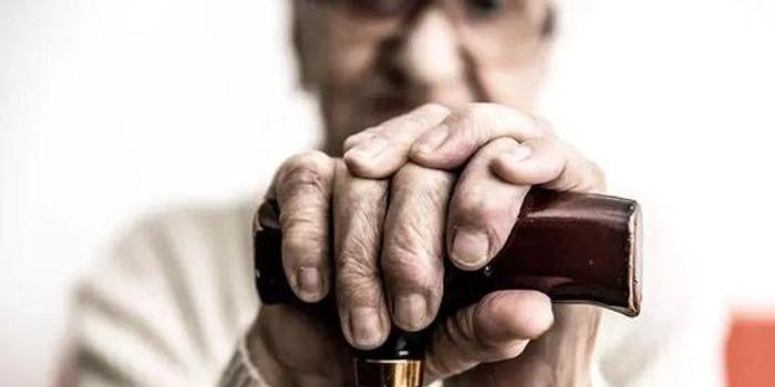 《科学》子刊封面:阿尔茨海默病,原来是记忆