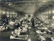 千面病毒:我们为什么无法打败流感?