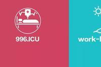 996.ICU背后:程序员在互联网公司的真实生态