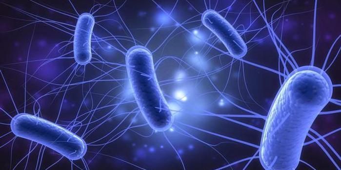 不起眼的大肠杆菌却不能小视:会让你腹泻甚至肾衰竭