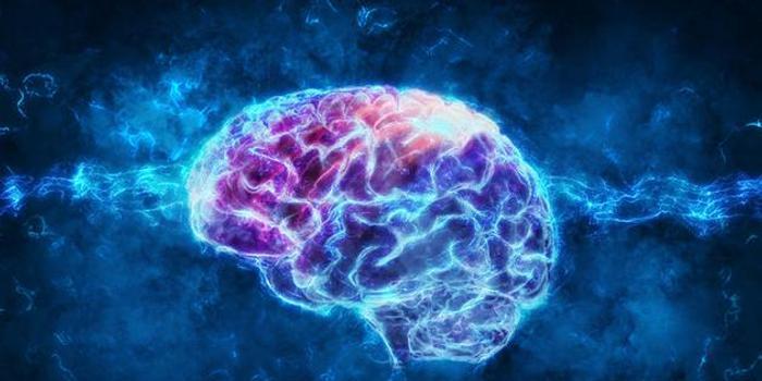 """电刺激或可使衰老大脑""""重返青春"""""""
