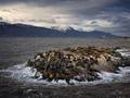 南美洲最南端自然美景:旷野冰山和五彩斑斓的城镇