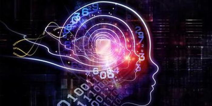 """对话王维嘉:""""赢家通吃""""逻辑不适用人工智能时代"""