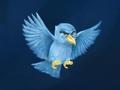 哪些用户是极端分子 Twitter用软件就可以找到他