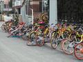 某品牌共享单车16辆仅1辆可用 运维或成下半场胜负手