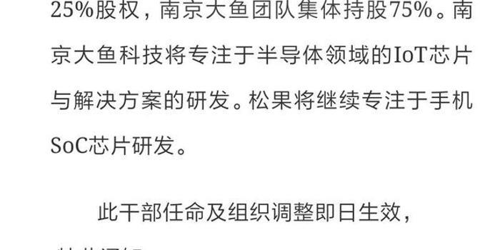 3d彩吧论坛_直击|小米松果电子分拆成立南京大鱼半导体 独立融资