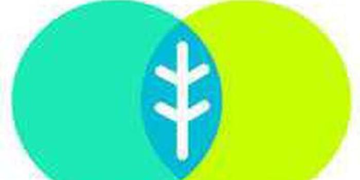 网易薄荷宣布12月31日起停服 届时数据将被清空