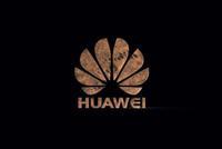 独家 余承东:华为5G手机6月出 消费者业务占比会更高