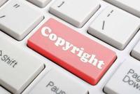 人民网将进军图片版权 视觉中国崩了