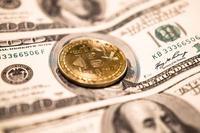 癱瘓2周后 美國又一城市將向黑客支付近50萬美元贖金