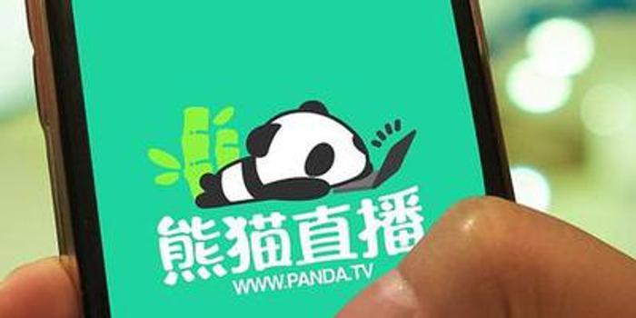 王思聪成被执行人或涉熊猫直播融资