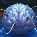 馬斯克:腦機接口公司可幫助治療自閉症和精神分裂症