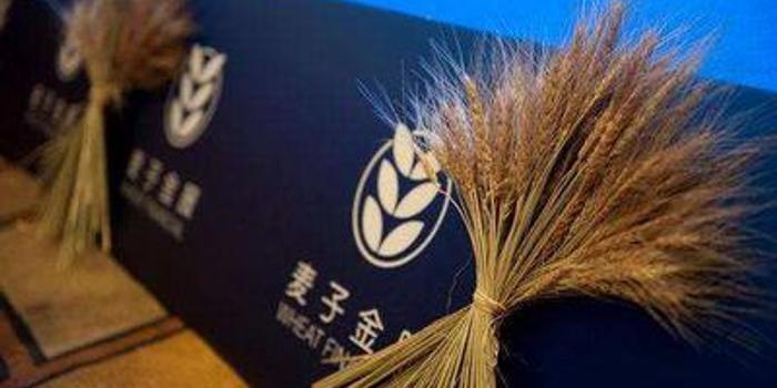 互金平台麦子金服遭警方查封:相关人员被刑拘