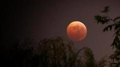 新浪众测为你解答如何观看月全食:掌握关键时间很重要
