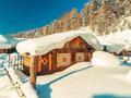 记录雪景美如画 拍照效果出色的手机盘点