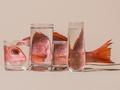 玻璃透视的错觉魅力 折射与反射之间的互动
