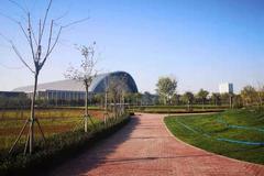 天津将新建一批医院、公园、菜市场……今年建成