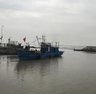 天津大神堂渔港采风