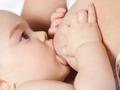 澳洲妇幼Dr韩:吃什么,能催奶或回奶?