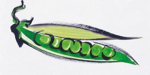 护心脏豌豆竟然是水果