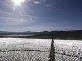 吓人!世界最大太阳能电站成死亡禁区:烤焦了飞鸟