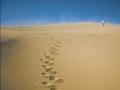 爆准沙漠测试看你的爱情婚姻