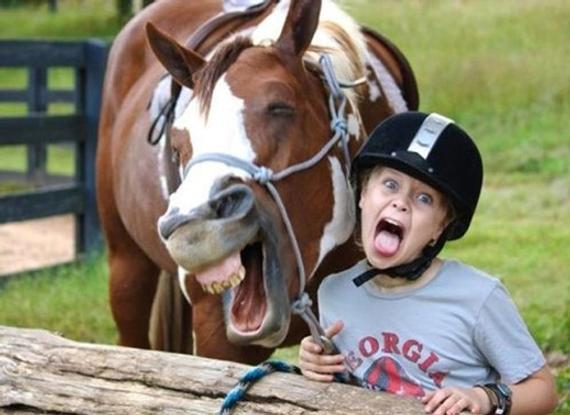 马儿也能模拟人类笑容