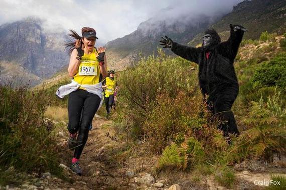 南非越野跑志愿者扮大猩猩吓选手。