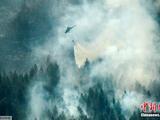 瑞典森林大火蔓延 政府出动飞
