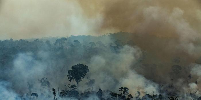 巴西因亚马逊雨林大火向美求援 特朗普称已准备就绪