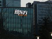 """自我革命:""""青年""""新东方的烦恼"""