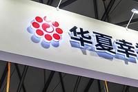 中国平安增持华夏幸福 已是三家TOP10房企第二大股东