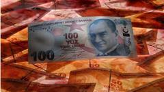 土耳其财长:土耳其将因货币危机变得更强