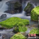 国家公园体制改革最新情况如何?官方回应
