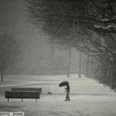 法国东北部持续降雪 当局关闭艾菲尔铁塔